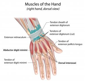 wrist-injury-management